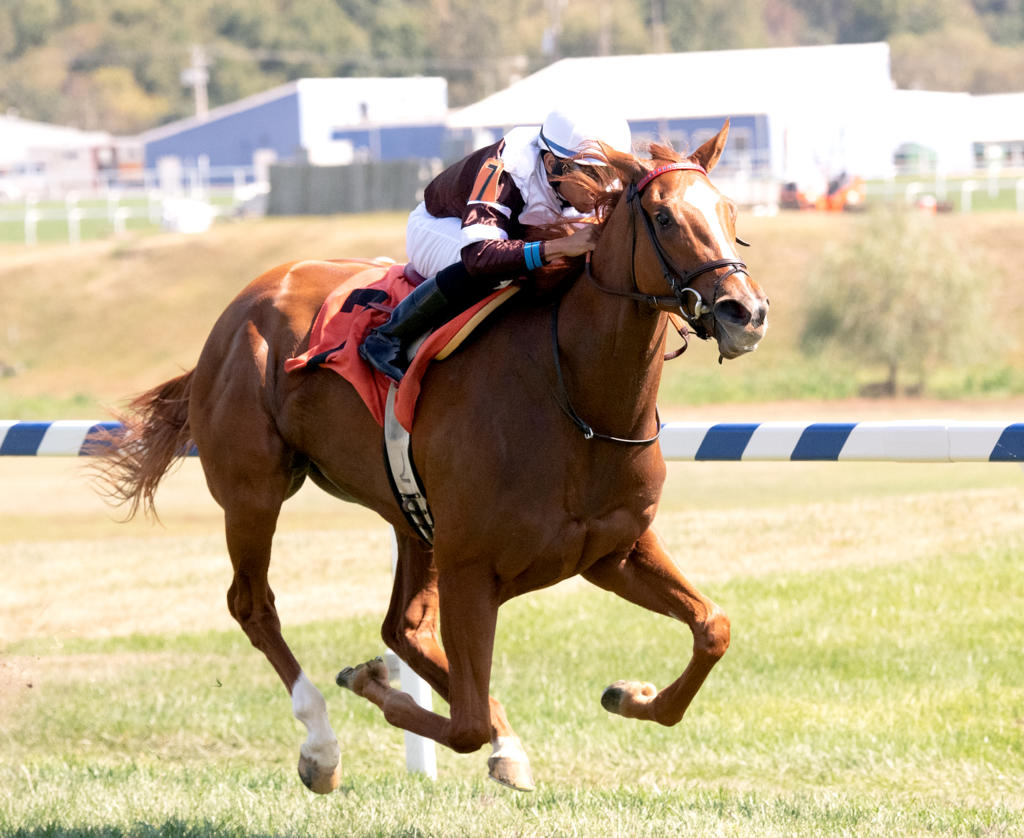 Sharing Dominates 200 000 Selima Stakes Eclipse
